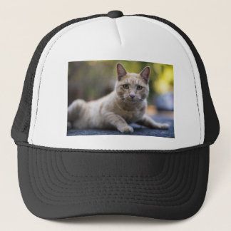 Wishful Beige Tabby Cat Trucker Hat