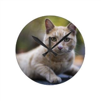 Wishful Beige Tabby Cat Wall Clock