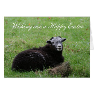Wishing ewe a Happy Easter Card
