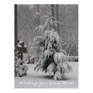 Wishing You Were Here! Postcard
