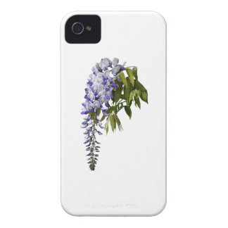 Wisteria and Leaves iPhone 4 Case
