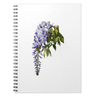 Wisteria and Leaves Notebooks