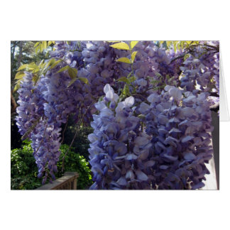 Wisteria Bunch Card
