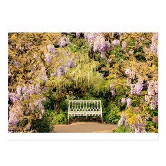 wisteria chair postcard