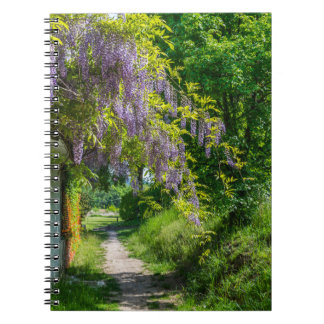 Wisteria country lane notebook