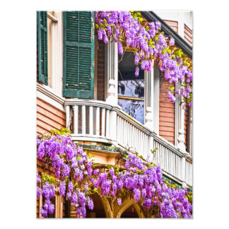 Wisteria on a Vintage Southern  Home in Savannah Photo Print