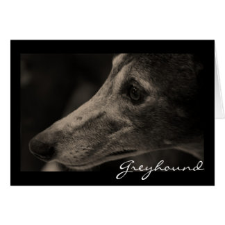 Wistful Greyhound Loving Eyes Card