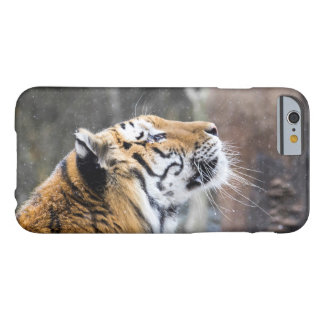 Wistful Winter Tiger Barely There iPhone 6 Case