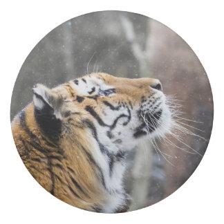 Wistful Winter Tiger Eraser