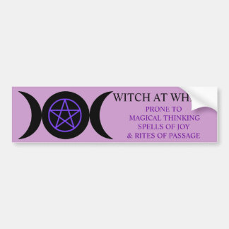 WITCH AT WHEEL BUMPER STICKER