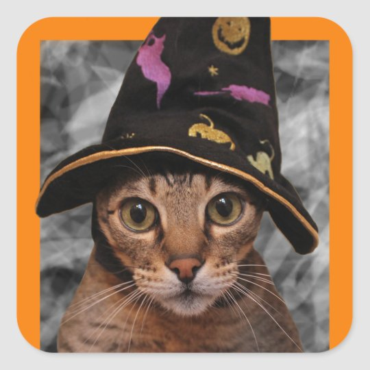 Witch Kitty Square Sticker