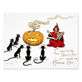Witch Teaching Black Cat Jack O' Lantern Photo Art