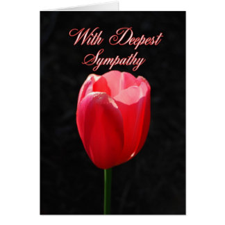 With Deepest Sympathy Red Tulip Greeting Cards