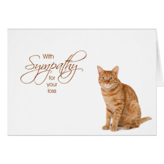 With Sympathy - loss of cat Card