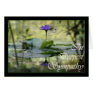 With Sympathy Simply stated condolences Cards