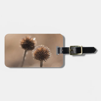 Withered globe thistle in autumn Macro Luggage Tag