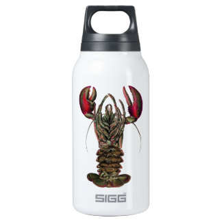 WITHIN ITS REACH INSULATED WATER BOTTLE