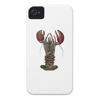 WITHIN ITS REACH iPhone 4 CASE