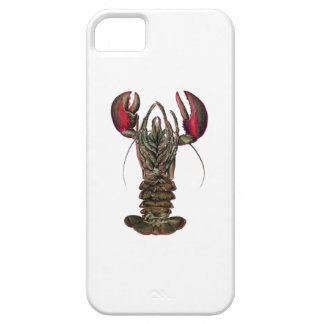 WITHIN ITS REACH iPhone 5 CASES
