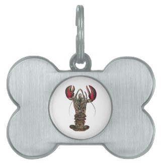 WITHIN ITS REACH PET ID TAGS
