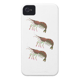 WITHIN THE BAY Case-Mate iPhone 4 CASES