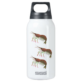 WITHIN THE BAY INSULATED WATER BOTTLE