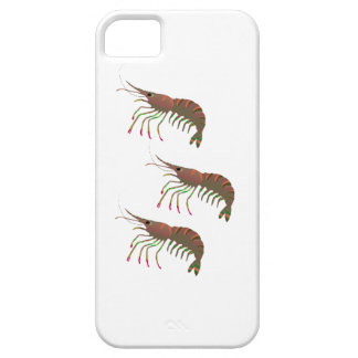 WITHIN THE BAY iPhone 5 COVER