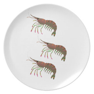 WITHIN THE BAY PLATE