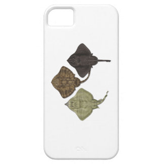 WITHIN THE SPECIES iPhone 5 CASES