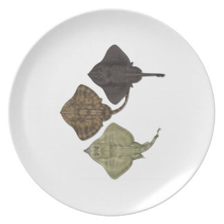WITHIN THE SPECIES PARTY PLATES