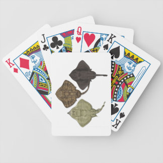 WITHIN THE SPECIES POKER DECK