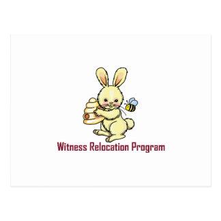 WITNESS PROGRAM POST CARDS