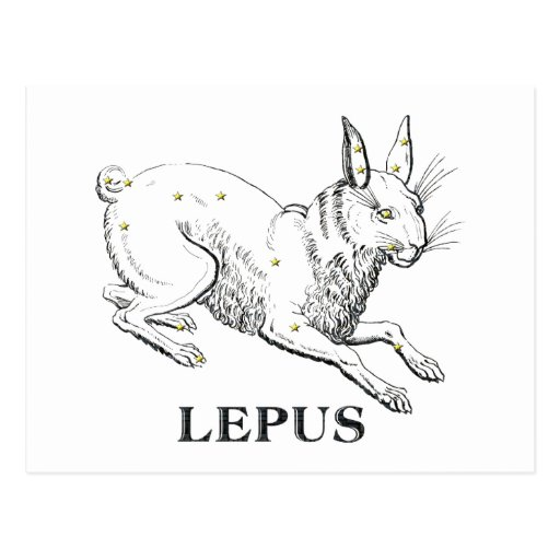 WITS: Lepus Post Cards