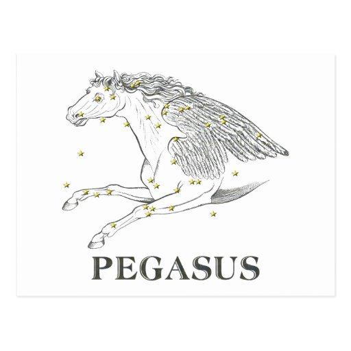 WITS: Pegasus Postcard