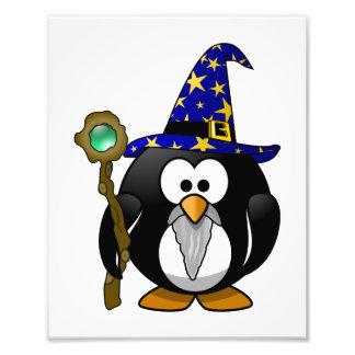 Wizard Penguin Cartoon Photo Art