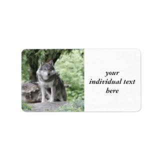Wolf 14AJ Label
