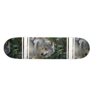 wolf-42 custom skateboard