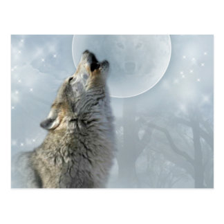 Wolf Blue Moon Post Cards