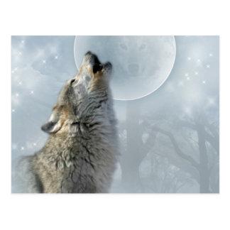 Wolf Blue Moon Postcard