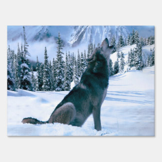 Wolf Call Sign