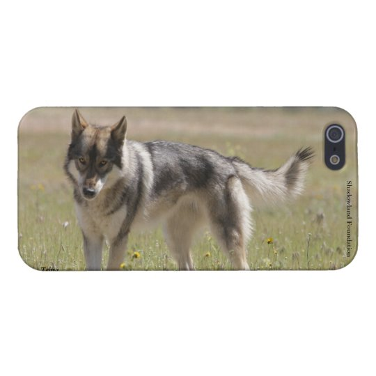 Wolf Case Savvy iPhone 5 Glossy Finish Case iPhone 5 Cover