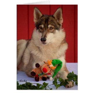 Wolf Christmas Card