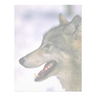 Wolf (close up) letterhead