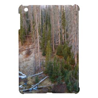 Wolf Creek Pass Forest Landscape iPad Mini Cases