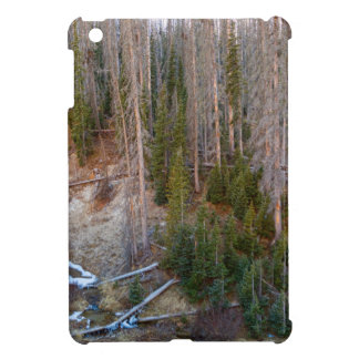 Wolf Creek Pass Forest Landscape iPad Mini Cover