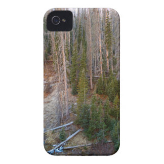 Wolf Creek Pass Forest Landscape iPhone 4 Case-Mate Case