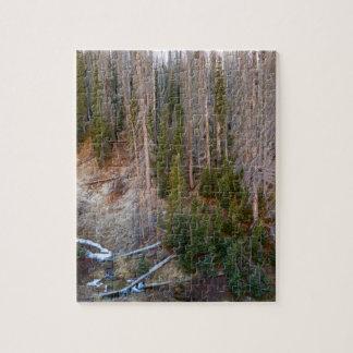 Wolf Creek Pass Forest Landscape Jigsaw Puzzle