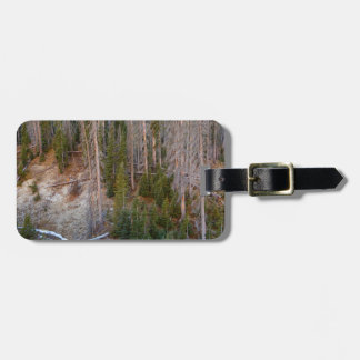 Wolf Creek Pass Forest Landscape Luggage Tag