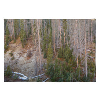 Wolf Creek Pass Forest Landscape Placemat