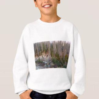 Wolf Creek Pass Forest Landscape Sweatshirt